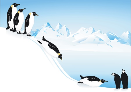 Penguins slide Stock Vector - 14304178