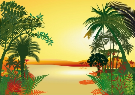 Rainforest on the river Stock Vector - 14550715