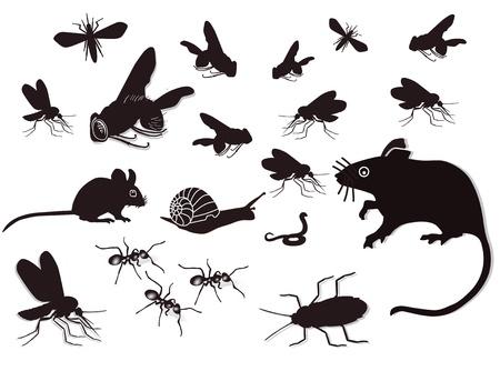 plagas: Las plagas y alima�as