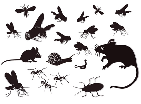mosquitoes: Pests and vermin