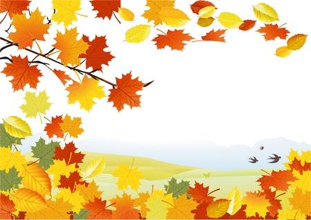 Autumn background Stock Vector - 15016211