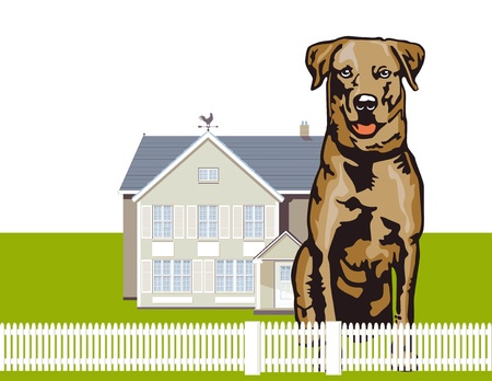 Attentive watchdog Stock Vector - 15016212