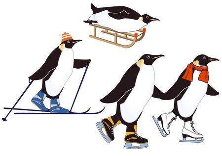 winter sports: Penguins in winter sports