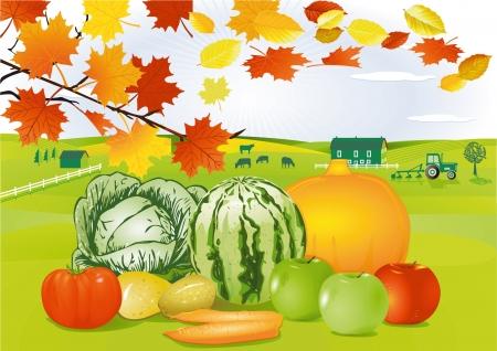 Thanksgiving Day Stock Vector - 15092491