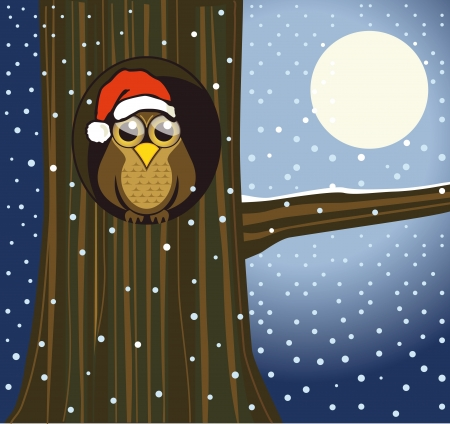 snowy owl: Christmas owl