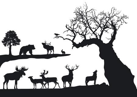 knorrigen Baum mit Wildtieren isoliert auf weiß Vektorgrafik