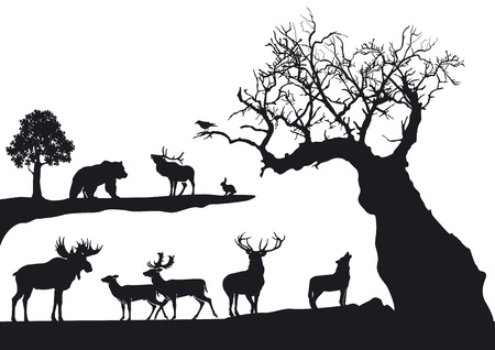 sękate drzewo z przyrody na białym Ilustracje wektorowe