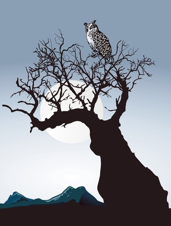 Owl on an old tree Stock Vector - 15556420