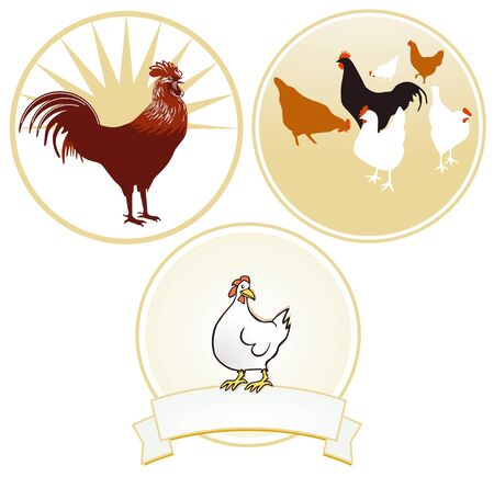 Chicken and rooster sign Stock Vector - 15731042
