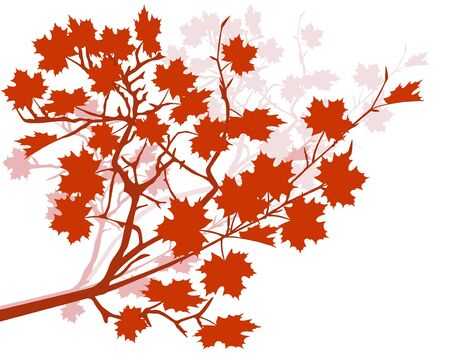 Red Maple Leaves Stock Vector - 15866452