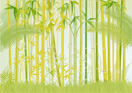 bamboo jungle Stock Vector - 15996111