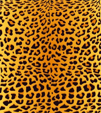 leopard cat: leopardskin
