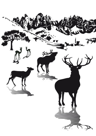 rut: Wild in the highlands