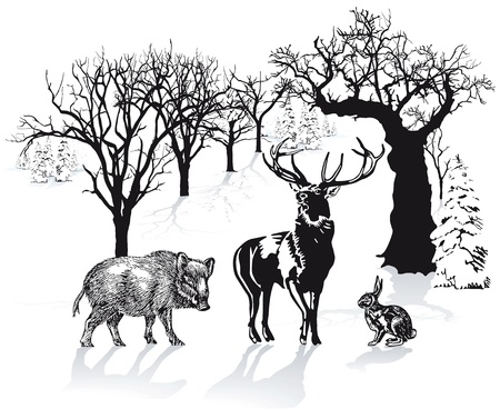 Deer, wild boar and rabbit in winter landscape Vector
