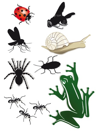 Creepy Crawlies Stock Vector - 18654144