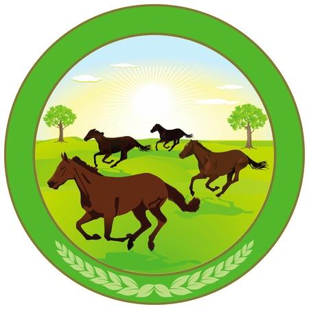 Horse breeding Label Stock Vector - 18976500