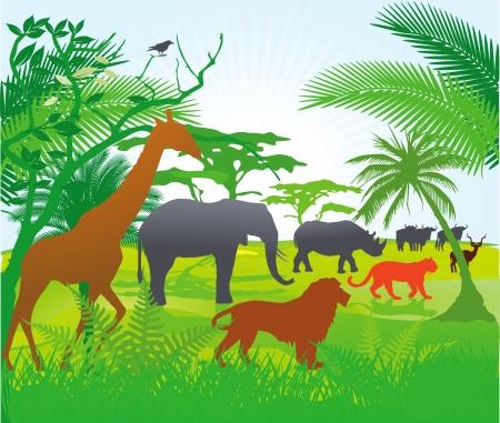 deforestation: Jungle with animals Illustration