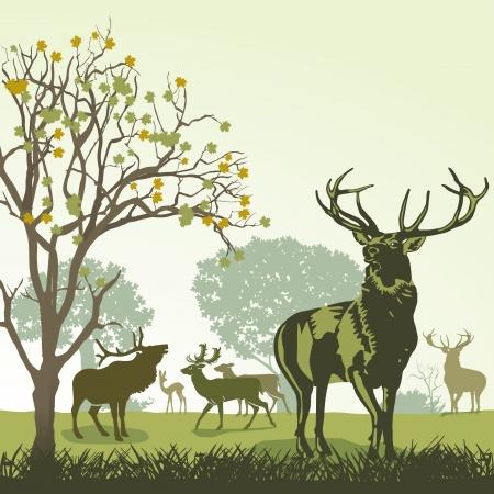 鹿や秋の野生動物  イラスト・ベクター素材