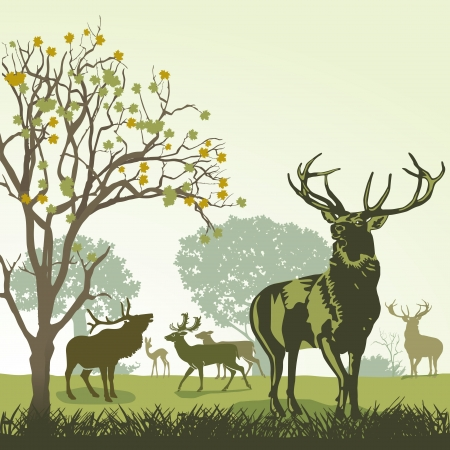 Herten en wilde dieren in de herfst Stock Illustratie
