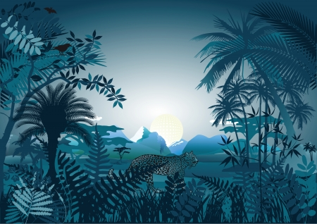 Night in the tropical rainforest Illustration