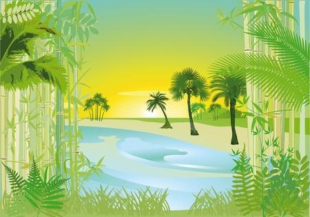 jungle scene: Tropical bay
