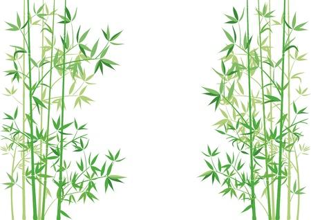 zen garden: bamboo branches