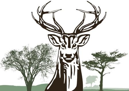 jachere: Cerf avec des arbres