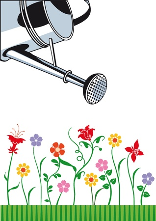 flower bed: garden maintenance