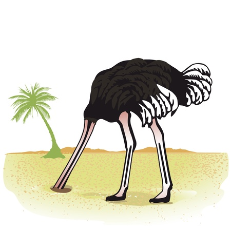 Ostrich hides its head in the sand Vector