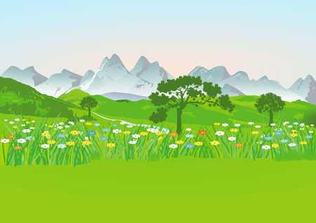 mountain meadow: Prado de la monta�a con las monta�as Vectores