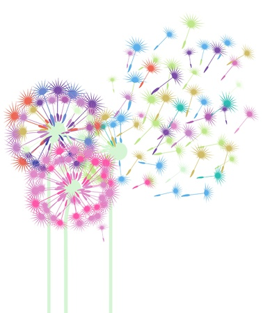 dandelion wind: colorful dandelions