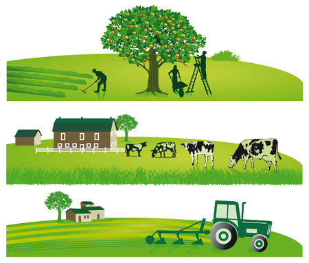 Agriculture and Garden Vector