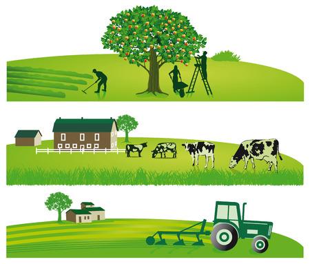 Landbouw en Tuin