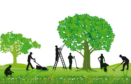 Gartenpflanzen und Beschneiden