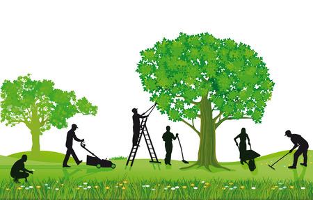 Gardening plants and pruning  Illustration