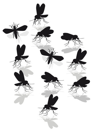 mosquitoes: mosquitoes plague  Illustration