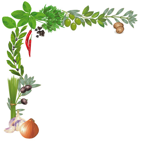 herb garden: Herbs and Spices
