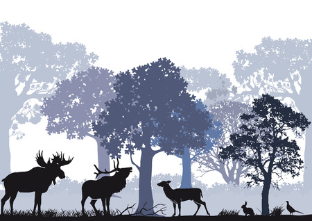 Deer with moose in the forest