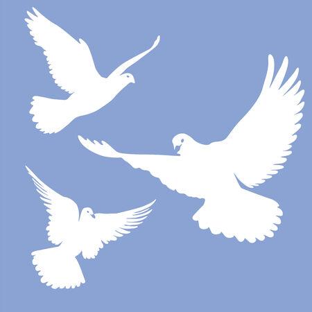 enlightment: flying white doves