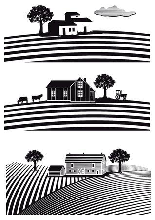 field crop: Farm and fields