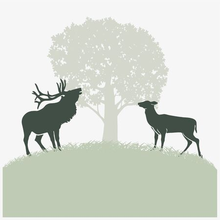 graphically: Deer in the rut