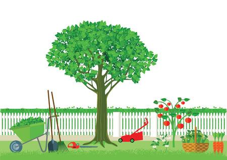 gardening: Gardening and harvesting