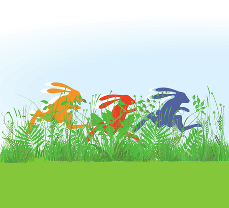 pastures: Racing rabbits in the meadow