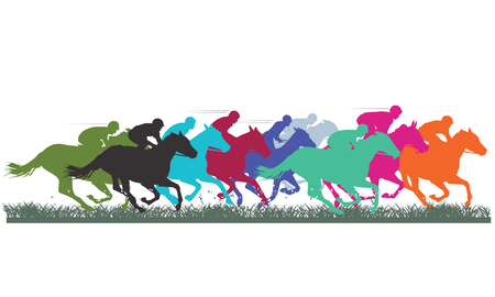 horse racing: Thoroughbred Racing