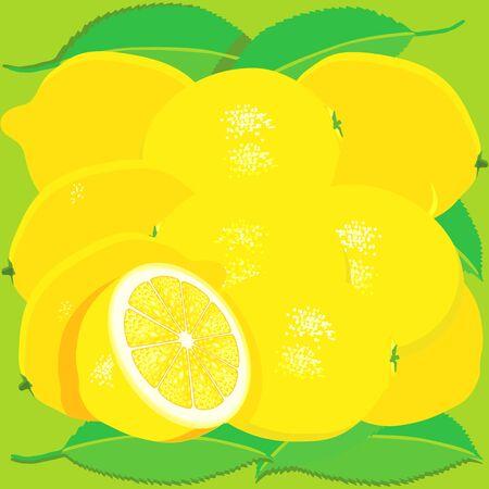 citron: lemon fruit with leaves Illustration