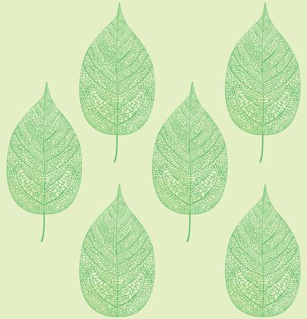 leaf pattern: leaf pattern
