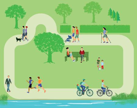 family park: Recreation in the park Illustration