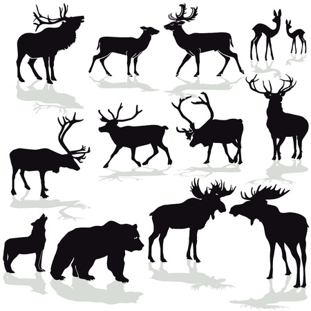 Ciervo y alces, rinoceronte silloleta vector de imagen