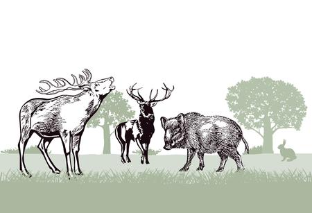 Herten en everzwijnen in het bos
