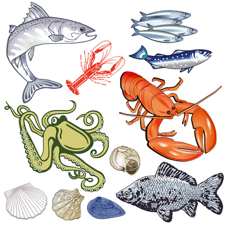 Seafood illustration. Ilustracja